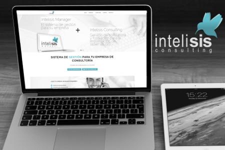 Intelisis Consulting - Desarrollo Web