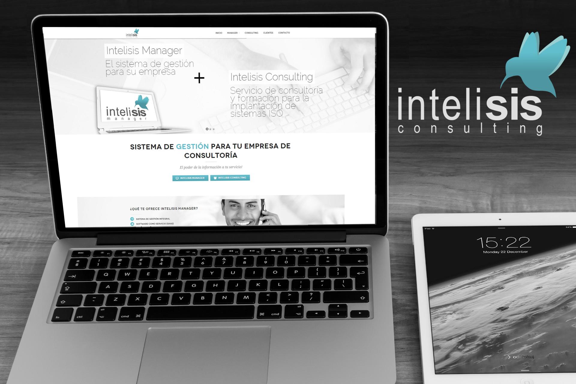 Desarrollo Web Intelisis Consulting
